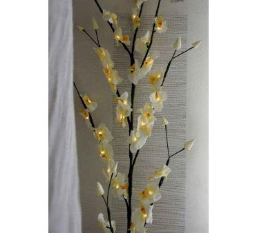 Branche Lumineuse Orchidee