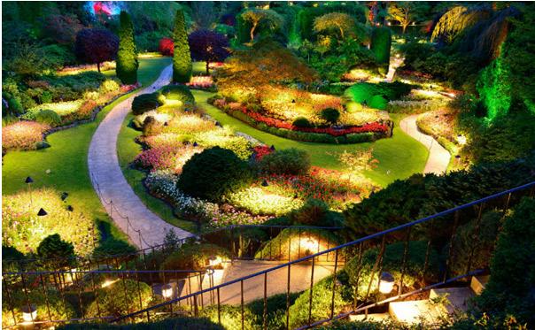 illustration-jardin